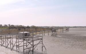 La Pointe Saint-Clément y la Bahía de Aiguillon. Situado a unos dos kilómetros de la ciudad de Esnandes, la Pointe Saint-Clément ofrece vistas panorámicas de la Bahía de Aiguillon, la Ile de Ré y la costa al norte de La Rochelle. La Pointe Saint-Clément y Pointe de l'Aiguillon, Vendée, son los dos extremos de la Bahía de Aiguillon. La Pointe Saint Clement es muy popular entre los pescadores, fotógrafos y observadores de aves. Colóquese en la cima del acantilado de piedra caliza para disfrutar de una vista impresionante de toda la bahía. Con sus marismas y prados de sal, el golfo de Aiguillon da la bienvenida en cualquier temporada a una gran variedad de aves. ¡Incluso hay hasta 150,000 en enero! Cuando el mar comienza a retirarse, es el mejor momento para observar a las aves y unirse a las marismas para alimentarse ... Pero la Pointe St-Clément también es un balcón extraordinario en toda la bahía de l'Aiguillon. En frente, verás además la Pointe del Aiguillon en Vendée. Juntos, marcan los dos extremos de la Bahía de Aiguillon, puerta de entrada para el agua de lluvia del Marais Poitevin. #berth99 #photographe #nature #photo #travel #traveltrip #PointeSaintClément #berth99CreativeStudio #Drone #DJI #MavicAir #DJIMavicAir #VistadeDrone #LaRochelle #Vendée #baiedelAiguillon #Esnandes #îledeRé #PointeSaintClément